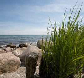 Ostsee – Grömitz und Umgebung